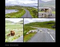 Fotobuch_Schottland_Seite_15